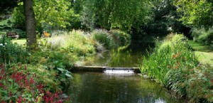POSTS FEATURE PICTURES gooderstone water gardens